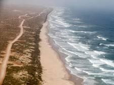 """La mer Rouge menacée par """"la plus grande catastrophe environnementale mondiale"""""""