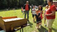 150 kinderen leven zich uit op 'Plezier in het park'