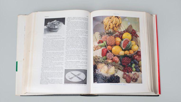 Larousse Gastronomique uit Wolkers' keuken. Beeld Annabel Miedema