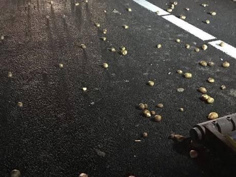 Chaos op A50 door vrachtwagen die lading aardappelen verliest: enorme vertraging