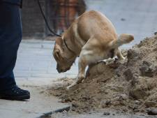 Hondenpoep of foutparkeren? Oppassen, Zevenaar wordt strenger