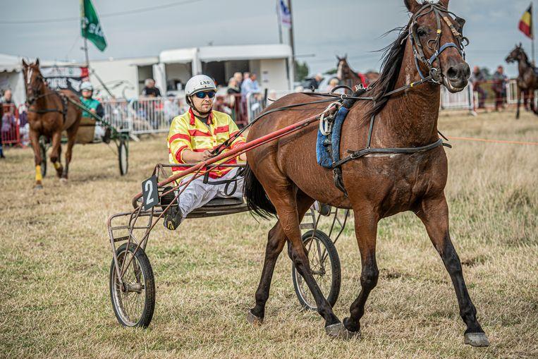 De jaarlijkse paardenkoers vond opnieuw plaats op de piste in de Waterstraat.