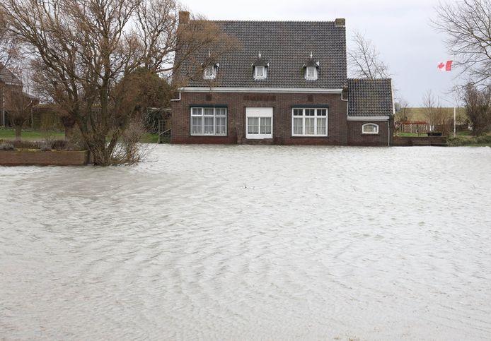 Hoogwater bij Perkpolder. De woningen op het oude veerplein zijn erop berekend