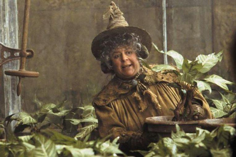 Professor Stronk, gespeeld door Miriam Margolyes