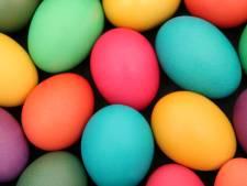 Het hele jaar door op zoek naar eieren? Dan is dit jouw baan