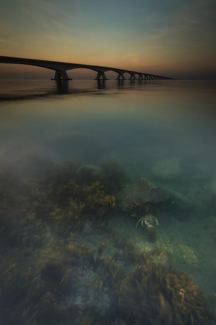 Prijswinnende foto selectie landschap in  Zeeland. Foto Marcel van Balkom