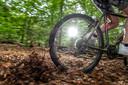 Een mountainbiker rijdt door een tapijt van bruine bladeren, terwijl het nog maar half augustus is.