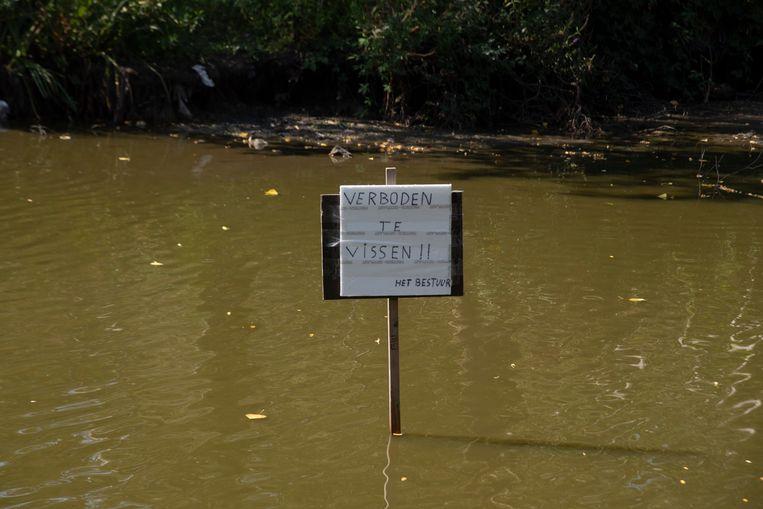 Door het lage water in de Warande vijver is een visverbod afgekondigd.