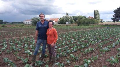 Bioboeren snakken na 30 jaar naar rust