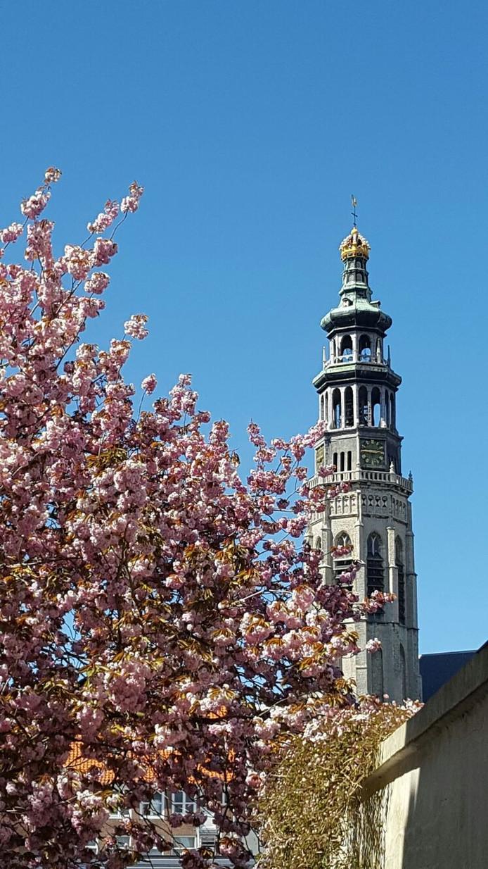 De Lange Jan in Middelburg.