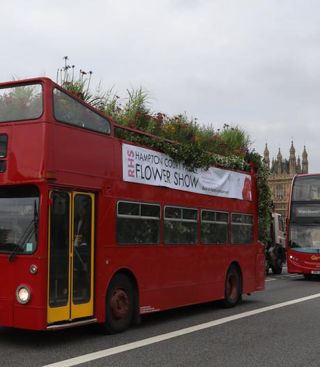 Dubbeldekkers in Londen gaan op koffieprut rijden