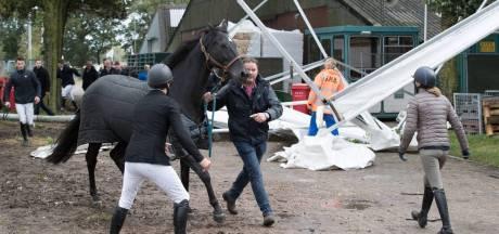 Concours Mariënheem draait op voor schade aan peperduur paard na omgewaaide tent in 2017