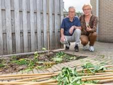 Klein beetje wiet kweken? Zwartewaterland staat het niet toe: Jan en Jannie zwaar teleurgesteld