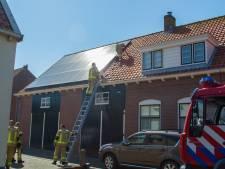 Duif komt vast te zitten tussen zonnepanelen van woning in Zoutelande en overlijdt