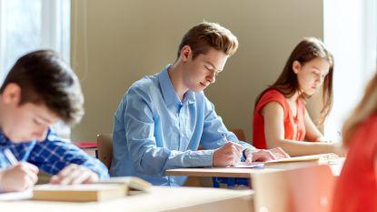 """Experten die meewerkten aan eindtermen voor secundair onderwijs luiden alarmbel: """"Voorstel afgezwakt door Weyts en onderwijsverstrekkers"""""""