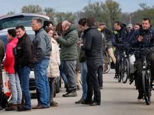 Broedende visarend trekt veel 'gluurders' in Biesbosch