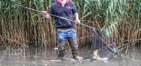 Rioolramp in Zwolse Wavin-vijver: 'Grote vissen bijna allemaal dood'