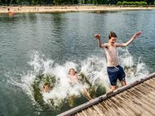 Zwemwater in Kralingse Bos opnieuw niet te vertrouwen