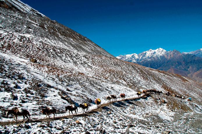 De Annapurna Trail in Nepal