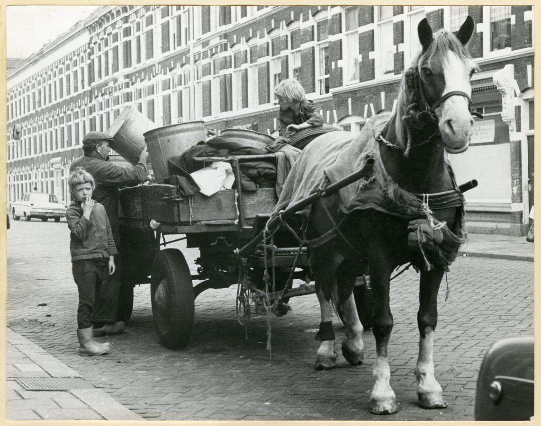 Schillenboer in de Van Ostadestraat.