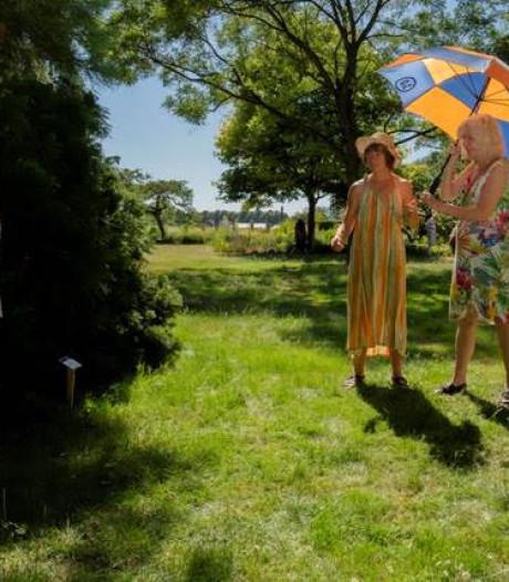 Kunstenaars komen naar Zenderen
