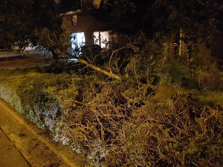 De wagen ramde eerst enkele bomen en struiken in de voortuin van de buren.