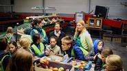 Leerlingen plukken appelen en peren