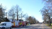 Brandweer dooft snoeihout na oproep omwille van hevige rookontwikkeling