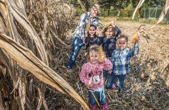 Het maisdoolhof van de familie Hopman in Malden ligt plat. Tussen de werkzaamheden door konden kinderen nog maiskolven zoeken.