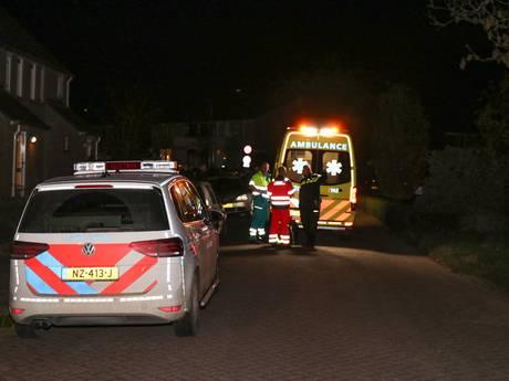 Hond kreeg spuitje na bijtincident in Rijswijk
