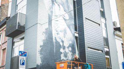 """Politieagent legt muurschildering in Pekelharing ten onrechte stil: """"Jammer voor stad die straatkunst doorgaans omarmt"""""""