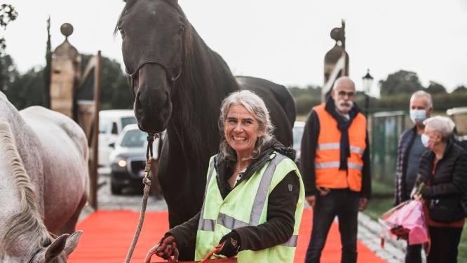 """Ziek paard Ease wandelt 100 kilometer om onder het mes te kunnen: """"Solidariteit onderweg was ontroerend"""""""