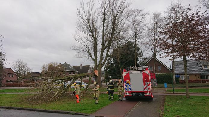Het fietspad aan de Grote Beer in Veenendaal is na het opruimen van de boom weer vrijgegeven.