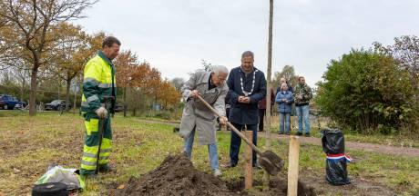 Stoffel Boot (100) zet zijn magnolia zelf in de grond