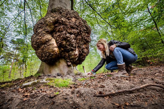 Ilonka Modderkolk bij een boom die veel voor haar betekent.