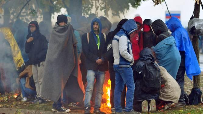 """""""Zweedse politie houdt misdrijven met vluchteling als dader of slachtoffer geheim"""""""
