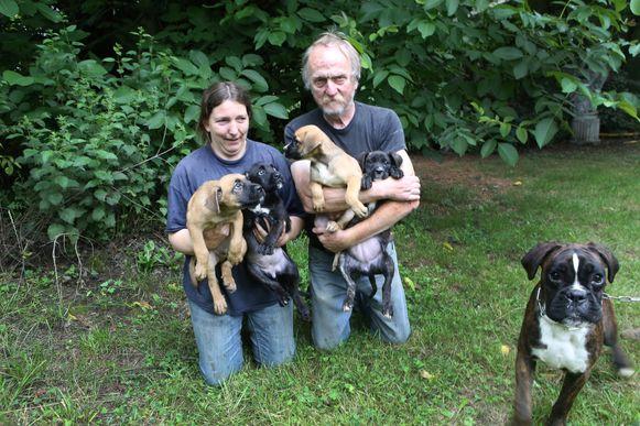 TIELT-Winge- in beslag genomen honden-Wendy Dekoster en Willy Desmedt