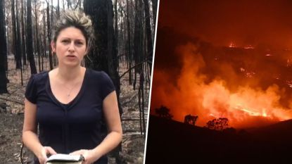"""Bosbranden in Australië komen samen in """"megabrand"""", onze reporter ter plaatse brengt verslag uit"""