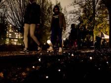 Wereldprimeur op Zuid: planten geven licht