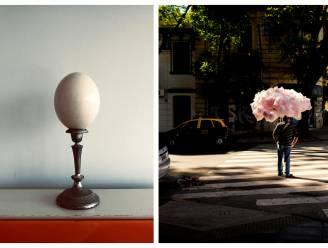 """Tom Barman is ook fotograaf: """"Als ik foto's ga schieten, ben ik op rooftocht"""""""