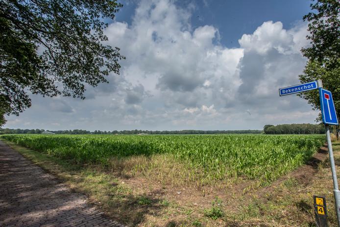 Op landbouwgrond aan het Bekenschot in Barchem komt mogelijk een zonnepark. Maar om de boel rendabel te kunnen exploiteren zouden er nog een aantal kleinere zonnevelden moeten komen. Na de zomer worden de plannen verder uitgewerkt.
