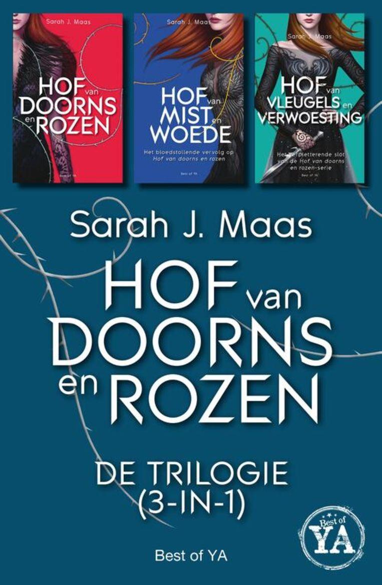Hof Van Doorns en Rozen van Sarah J. Maas.