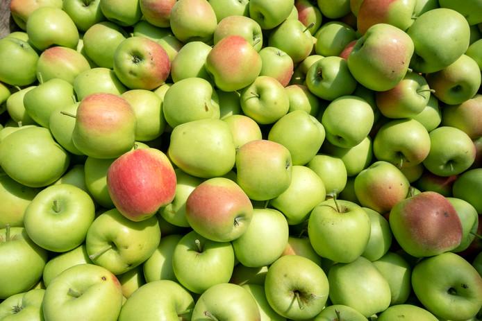 Ressen, 27 julii 2018. Wessel van Olst van Landwinkel de Woerdt heeft vrijdagochtend de eerste appels geplukt, Delbar Estivale is het ras. 192603 . dgfoto. Foto: Gerard Burgers