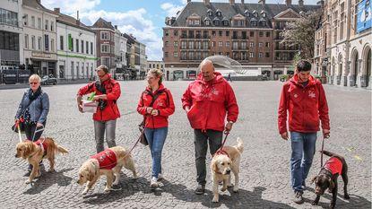 Blindengeleidehonden palmen Schouwburgplein in