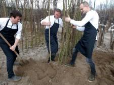 Kok Maurice staat nu tot zijn enkels in klei bomen te rooien