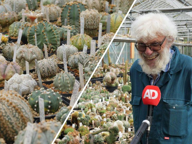 Een uit de hand gelopen hobby: Hans heeft 100.000 cactussen