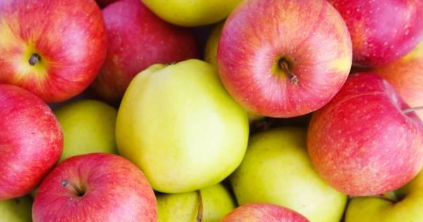 Waarom je beter een rode dan een groene appel kunt eten