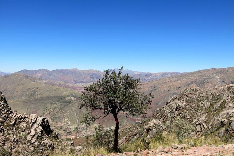 De krater van Maragua, een dagtocht vanuit Sucre. Beeld Ynske Boersma