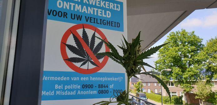 In een flat in Hengelo werd onlangs een plantage aangetroffen.