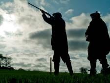 Faunabescherming vreest voor fouten tijdens ganzenjacht in Overijssel